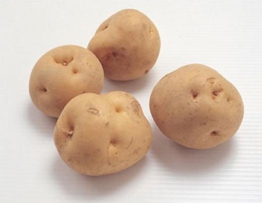 Phần lớn các trường hợp tử vong do ăn khoai tây trong 50 năm qua ở Mỹ đều là do sử dụng khoai tây xanh hoặc uống trà lá khoai tây.