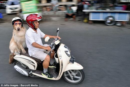 Đi dạo bằng xe máy thật là tuyệt!