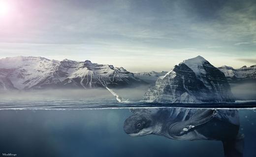 Dưới góc máy của thợ chụp ảnh, dãy núi có thể hóa thành chiếc mai rùa khổng lồ.
