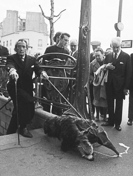 Danh họa Salvador Dali từng xuất hiện trước đám đông với vật cưng là một con thú ăn kiến!