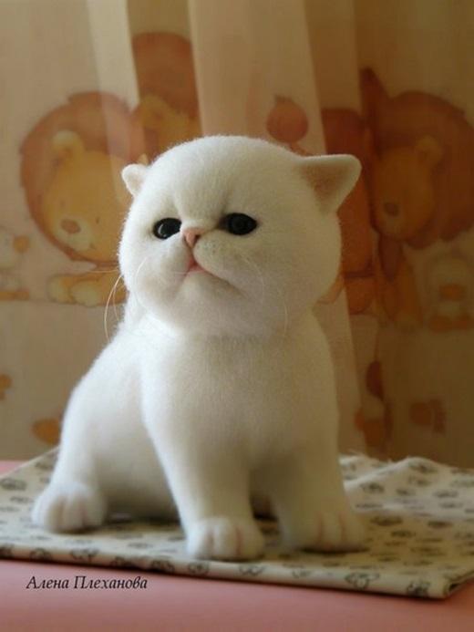 Những chú mèo bông này đang được sản xuất ngày một nhiều.