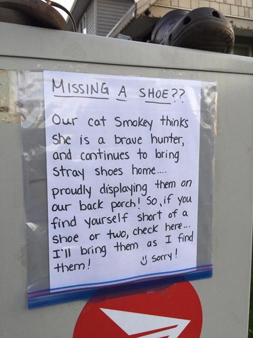 """Không có món đồ gì nằm ngoài danh sách """"ăn trộm"""" của lũ mèo.(Tạm dịch: Chú mèo Smokey của chúng tôi luôn tưởng hắn là một tay thợ săn dũng cảm, nênluônmang những chiếc giày lạ hoắc về nhà... và trưng bày chúng ngay trước cửa ra vào! Vì vậy, nếu bạn bị mất một hay hai chiếc giày thì có thể tìm lại tại đây. Thành thật xin lỗi!)(Ảnh: Internet)."""