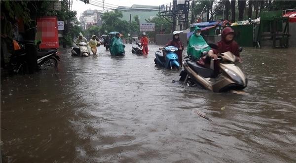 Hàng loạt xe chết máy giữa dòng nước, chủ phương tiện phải đẩy bộ(Ảnh: FB)