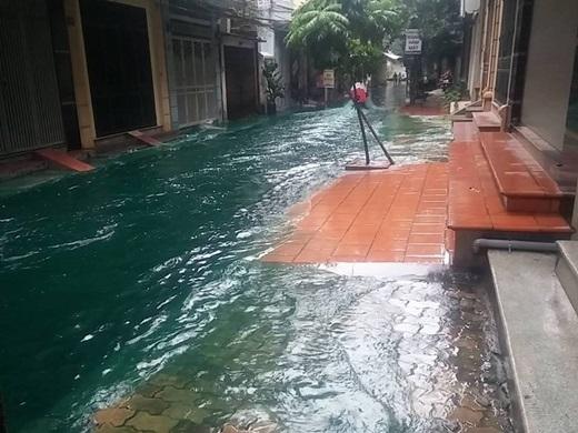 Nước ngập không còn là hiện tượng lạ trong những ngày gần đây, nhưng nước lụt có màu xanh thì quả thật là... quý hiếm. (Ảnh: FB)