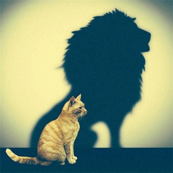 Đừng bó buộc bản thân trong những suy nghĩ hạn hẹp tầm thường. Hãy nghĩ lớn! (Ảnh: Internet)