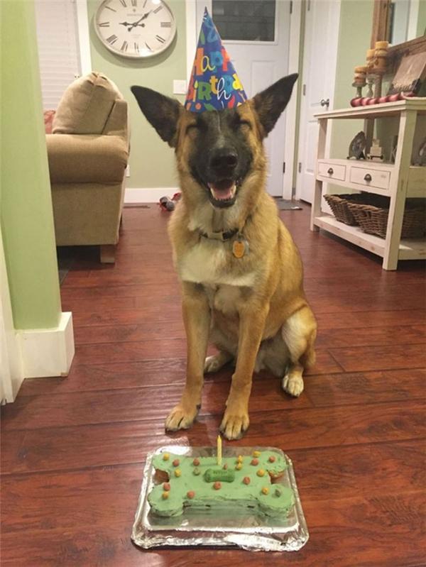 """""""Sinh nhật nên tươi đừng hỏi luôn nhé!"""".(Ảnh Internet)"""