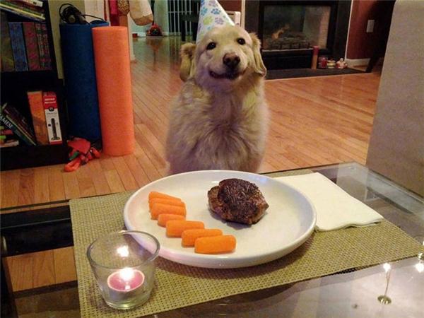 Sắp được ăn tiệc sinh nhật rồi.(Ảnh Internet)