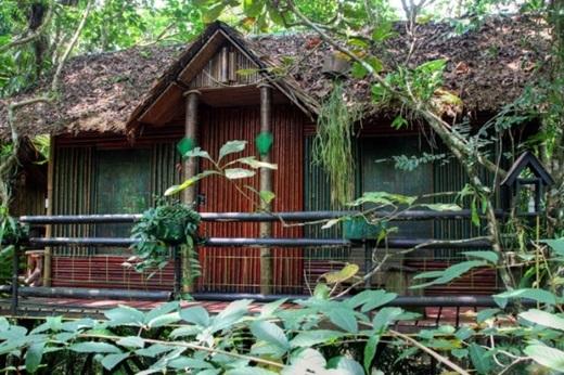 Khu nghỉ dưỡng nhà cây này còn có những chiếc ghế ở ban công để bạn có thể nghỉ chân và thả hồn vào thiên nhiên. (Nguồn: Internet)