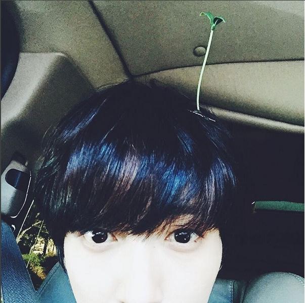 Tuy vẻ ngoài khó gần nhưng trôngYonghwa (CN Blue) cũng vô cùng nhí nhảnh với kẹp mầm xanh trên đầu.