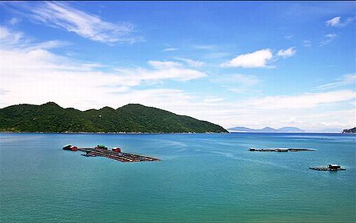 Vịnh Vũng Rô đang được chính quyền đầu tư phát triển du lịch. Tại đây, du khách có thể thuê thuyền của ngư dân để trải nghiệm cảm giác đánh bắt thủy hải sản, cũng như phóng tầm mắt ra bãi biển xanh ngọc tại đây.(Ảnh: Internet)