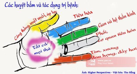 Hình minh họa (Nguồn: Higher Perspectives - Việt hóa: Thu Hằng)