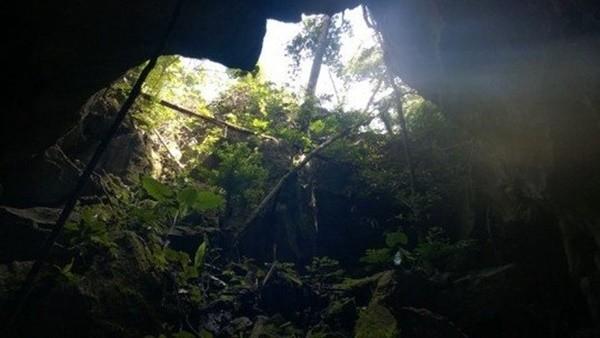 Từ trong hang nhìn ra phía ngoài. Ảnh do anh Nguyễn Văn Ninh cung cấp
