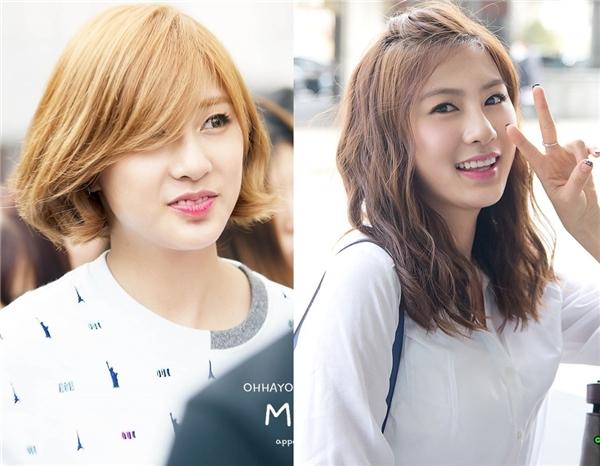 Các fan của A Pink không khỏi háo hức trước thông tin trở lại của nhóm để được ngắm em út Hayoung trong hình tượng tóc ngắn mới lạ.