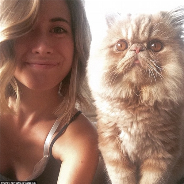 """Cô chủ Jessie của Sir Winston từng là một người rất yêu chó nhưng đã """"đổi gu"""" sau khi """"đổ đứ đừ"""" trước vẻ đáng yêu của chú mèo này.(Nguồn: Daily Mail)"""