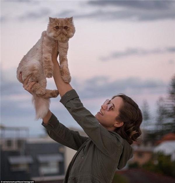 Rõ ràng không có gì có thể cách trở tình bạn bền chặt giữa mèo Sir Winston và cô chủ Jessie.(Nguồn: Daily Mail)