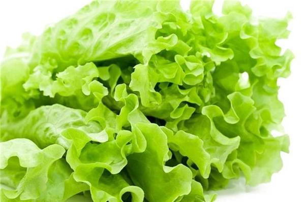 Ăn xà lách thường xuyên có thể giúp ngăn ngừa loãng xương, thiếu máu do thiếu sắt, ngừa bệnh tim mạch và ung thư.