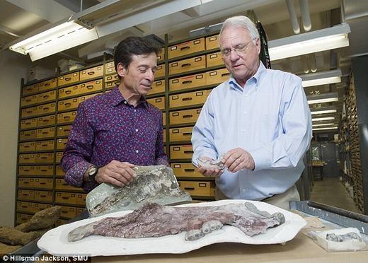 Giáo sư Louis (phải) bên hóa thạch của mình. (Ảnh: Internet)