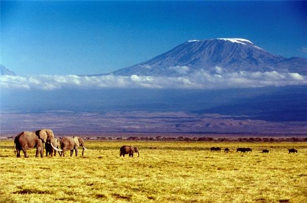 Với độ cao 5.895m, Kilimanjaro là đỉnh núi cao nhất châu Phi và cao thứ 4 trong số 7 đỉnh theo từng châu lục trên thế giới. (Nguồn: Internet)