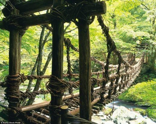 Còn đây là cây cầu ở đảo Shikoku, Nhật Bản. Nó được làm chủ yếu bằng gỗ và dây nho. (Ảnh: Internet)