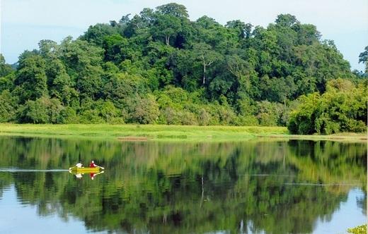 """Vườn quốc gia Nam Cát Tiên thuộc tỉnh Đồng Nai, nằm cách Sài Gòn khoảng 150km về phía đông, là một điểm tham quan, nghỉ dưỡng được nhiều người biết đến đã nhiều năm, nay đột nhiên """"sốt xình xịch"""" trở lại. (Nguồn: Internet)"""