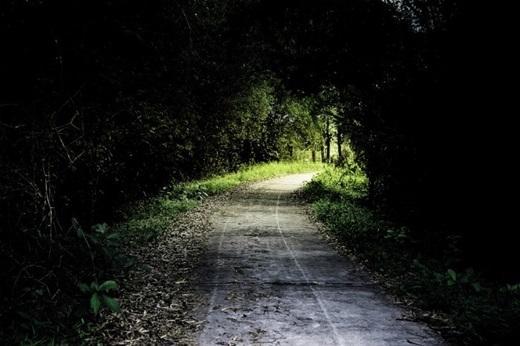 Bạn không phải sợ lạc vì trên đường sẽ có biển chỉ dẫn đi về phía vườn quốc gia Nam Cát Tiên.(Nguồn: Internet)