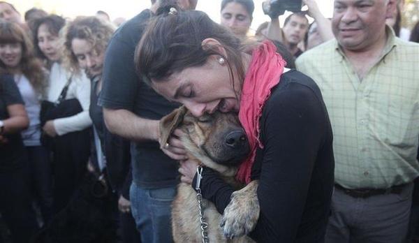 Tình bạn gắn bó giữa người và chó một lần nữa được chứng minh. Hình ảnh đoàn tụ của người phụ nữ và con vật nuôi sau trận lũ lụt ở La Piata, Argentina đã khiến những người xung quanh thực sựcảm động.(Ảnh: Internet)