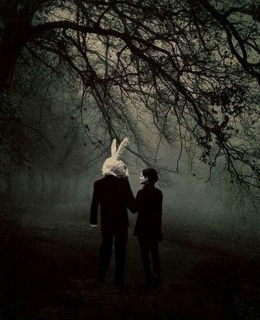 """Một """"câu chuyện cổ tích"""" diễn ra trong cánh rừng sâu hun hút, đôi tình nhân một người -một thỏ đã thành tinh trông thậttình cảm bước đi… (Ảnh: Internet)"""