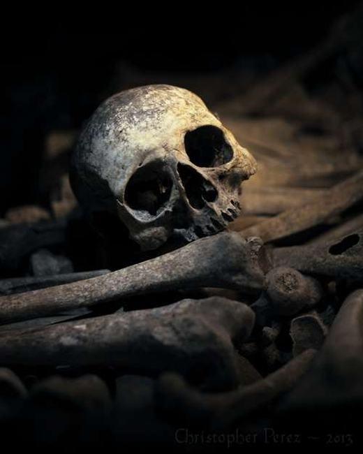 Chiếc đầu lâu trồi lên giữa bãi xương người, liệu đây có phải là hoàng tử đã bỏ mạng khi đấu tranh với cái ác? Hãy nhìn sâu vào đôi mắt để biết nhé! (Ảnh: Internet)