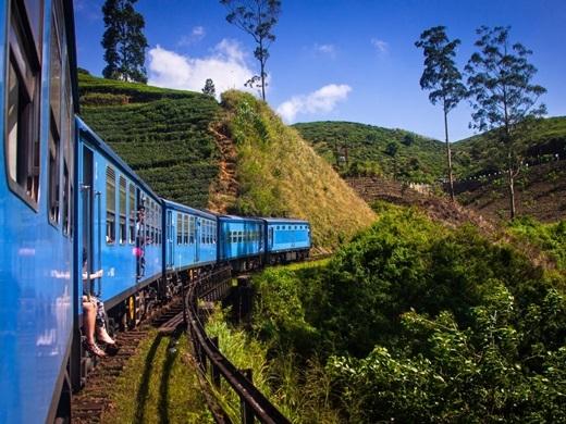 Nếu bạn đang cảm thấy mất phương hướng trong cuộc sống thì Sri Lanka có thể giúp bạn tìm thấy chính mình. Vác ba lô lên và đến Sri Lanka, mua bột chiên, cà ri từ xe quà vặt phục vụ trên chuyến xe lửa đưa du khách đến những vùng đất thần tiên, nhìn ra cánh đồng chè dường như vô tận và rồi kết thúc chuyến đi ở Đền Vàng Dambulla hoặc các khu chợ Pettah sầm uất.(Ảnh: Business Insider)