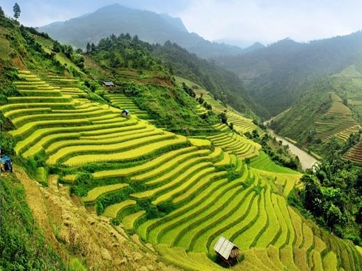 """Đầu bếp nổi tiếng Anthony Bourdain nói rằng,Việt Nam đã thay đổi cuộc đời của ông: """"Nơi đây như một hành tinh khác vậy, cuốn hút tôi vào để rồi tôi chẳng nỡ rời xa"""". Du khách nước ngoài đặc biệt thích nhâm nhi cốc cà phê thơm lừng và ăn phở, một số phượt thủ thì không thể chờ đợi để chinh phục Sơn Đoòng.(Ảnh: Business Insider)"""