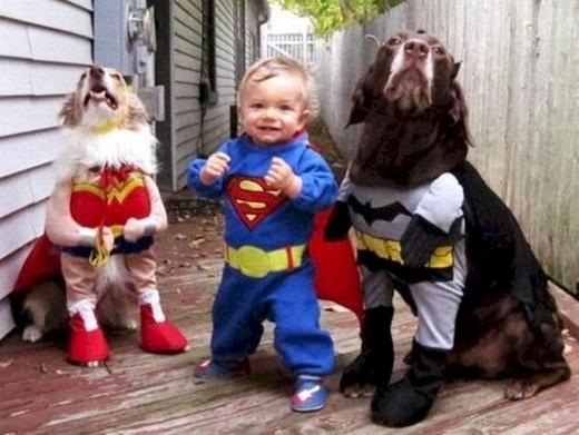 Biệt đội siêu anh hùng có mặt!(Ảnh: Diply)