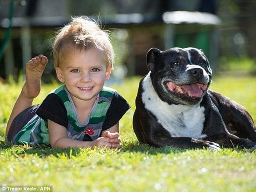 Cậu béAlexander Kenney bên con chó đã cứu sống mình. Ảnh: Internet