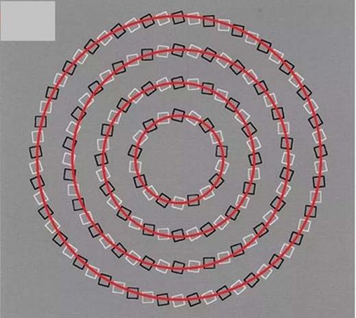 Bạn nhầm đấy, chúng được xếp theo các đường tròn đồng tâm. (Ảnh: Internet)
