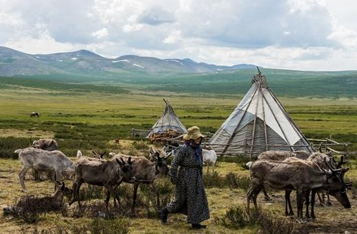 Một cảnh đẹp giản đơn thường thấy ở Mông Cổ hoang dã.(Ảnh: Internet)