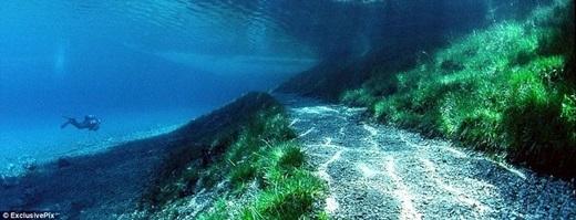 Thoạt nhìn, đáy hồ không khác gì đáy đại dương. (Ảnh: Internet)