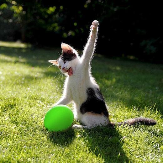"""""""Dừng tay lại! Coi chừng 'bể bóng'"""". (Ảnh: Internet)"""