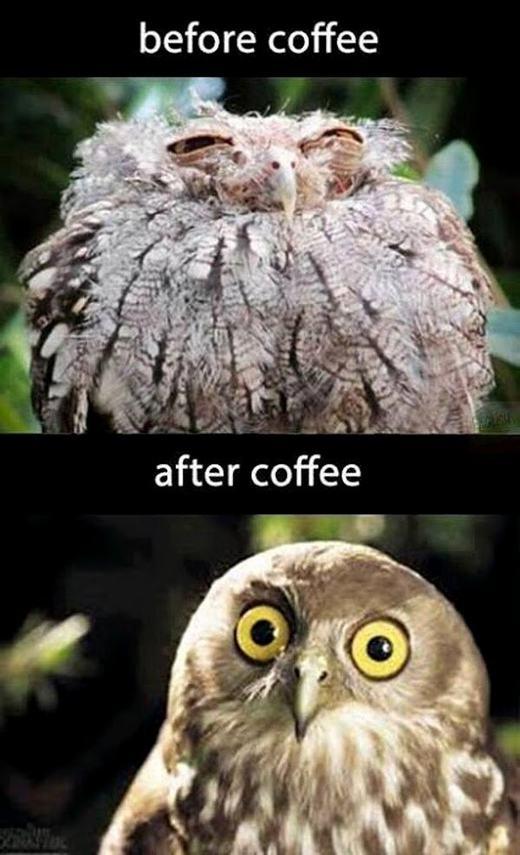 Mỗi sáng phải có 1 ly cà phê thì đời mới tươi sáng được!(Ảnh: Internet)