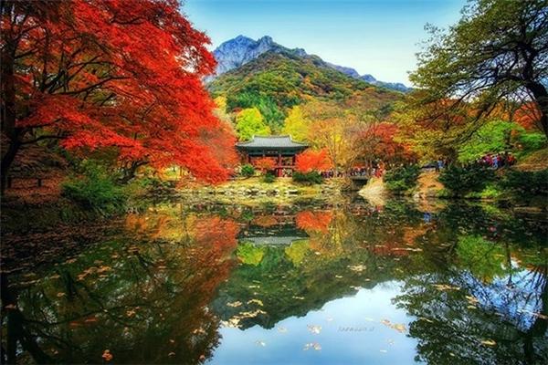 Sắc màu của mùa thu.