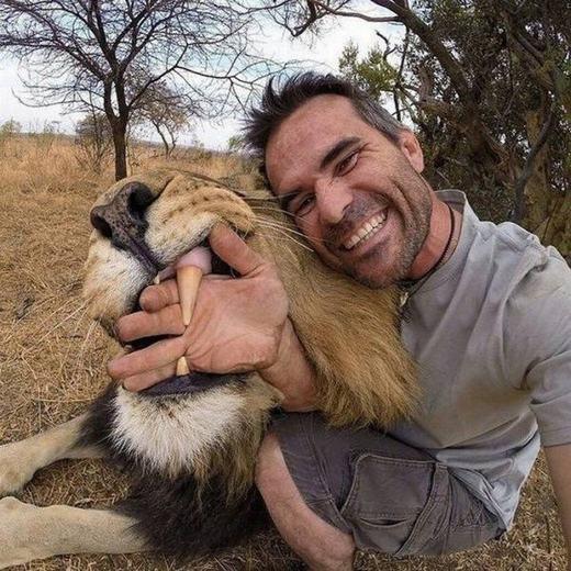 Đùa giỡn với hàm răng sắc nhọn của sư tử... (Ảnh: Internet)