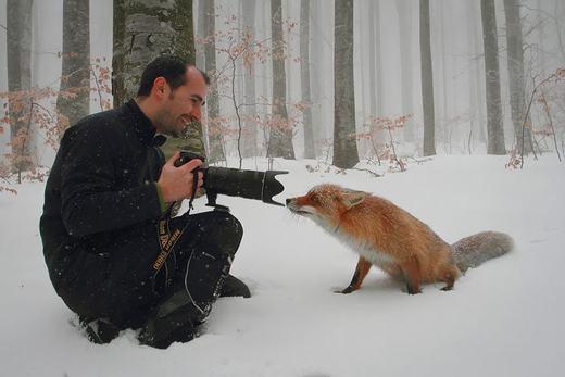 """""""Anh chụp cho em hình gần mặt nhé, tối về hù người yêu chơi!"""". (Ảnh:Boredpanda)"""