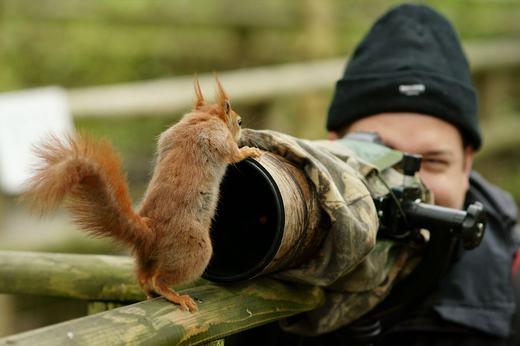 """""""Không được chụp! Em không thích chụp!"""". (Ảnh:Boredpanda)"""
