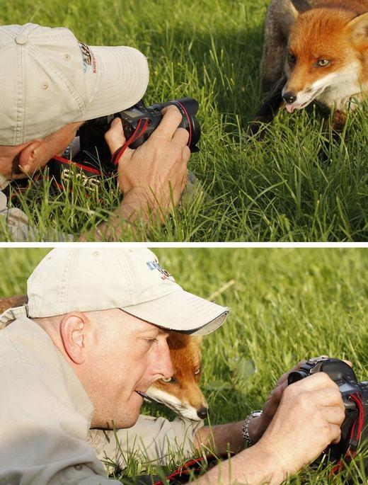 """""""Chú có thấy mặt con 'ăn ảnh' không?"""". (Ảnh:Boredpanda)"""