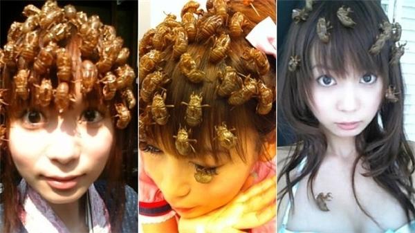 """Kẹp tóc côn trùng - trào lưu """"khó đỡ"""" của thiếu nữ Nhật Bản.(Ảnh: BuzzFeed)"""