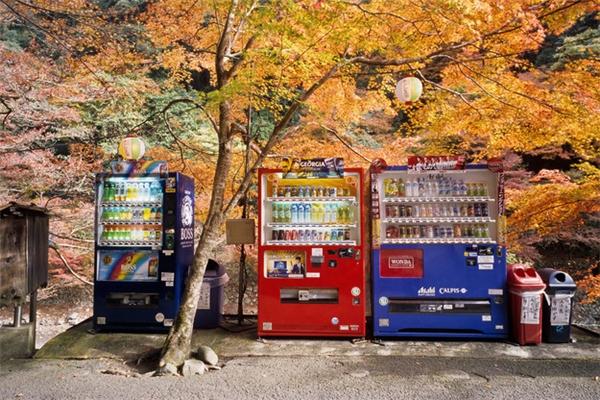 """Đôi khi ta tự hỏi: người Nhật đặt 3 chiếc máy bán hàng tự động ở chung một chỗ nhằm mục đích """"cao cả"""" gì?(Ảnh: BuzzFeed)"""
