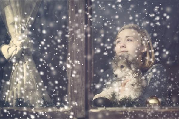 Nét mặt vô âu vô lo của đôi bạn giữa những bông tuyết trắng mở ra trước mặt người xem một khung trời thanh bình tuyệt đối. (Ảnh:Svetoslava Madarova, Bulgaria)