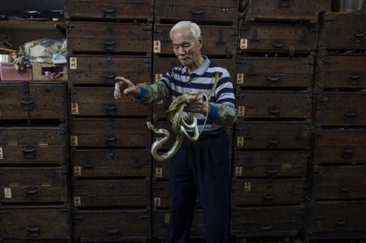 """Ông Mak Tai-kong - chủ nhân cửa hàng She Wong Lam và tủ chứa rắn với những nhãn ghi tiếng Trung mực đỏ """"Rắn độc"""" để cảnh báo nguy hiểm.Ảnh: Internet"""