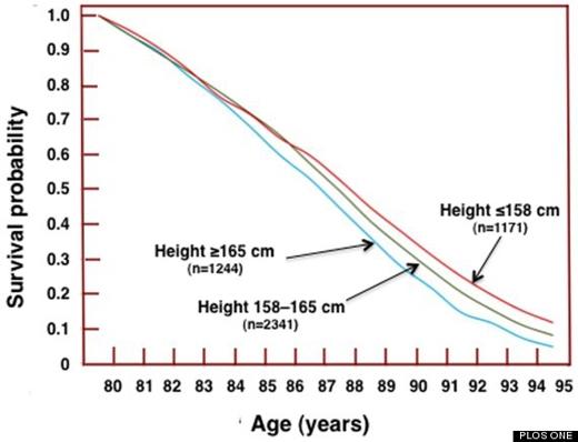 Biểu đồ mô phỏng mối tương quan giữa chiều cao và tuổi thọ. (Ảnh: PLOS ONE)