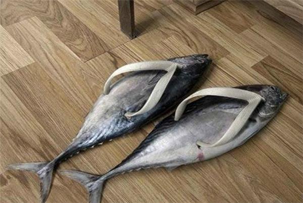 Hay mang một đôi dép cá bá đạo hết cỡ này. (Ảnh: Internet)