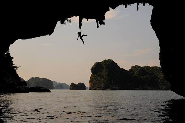 Vũ được xem như là người nhện ở Việt Nam. Ảnh: Internet