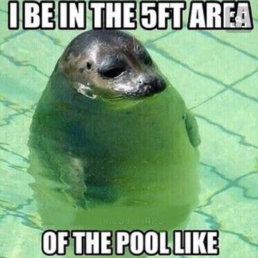 """Do sở hữu chiều cao quá """"tuyệt vời"""" nên dù biết bơi, các nàng """"nấm lùn""""vẫn hay bị bảo vệ dặn: """"Chơi chỗ cạn thôi nha em!"""". (Ảnh: instagram.com)"""